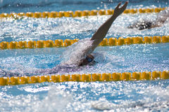 SWM :世界水上冠军-妇女400m个体混杂的人群 库存照片