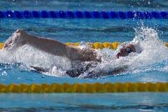 SWM :世界水上冠军-精神400个体混杂的人群 图库摄影