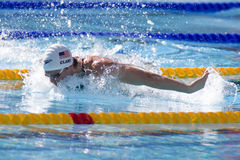 SWM :世界水上冠军-精神400个体混杂的人群 库存照片