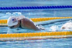 SWM :世界水上冠军-精神400个体混杂的人群 库存图片