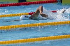 SWM :世界水上冠军-精神400个体混杂的人群 免版税库存照片