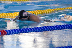 SWM :世界水上冠军-精神400m个体混杂的人群f 库存照片