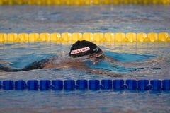 SWM :世界水上冠军-精神400m个体混杂的人群f 库存图片