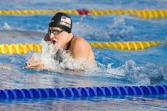 SWM :世界水上冠军-精神400m个体混杂的人群f 免版税图库摄影
