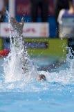 SWM :世界水上冠军-精神4 x 100m混杂的人群 免版税库存图片