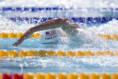 SWM :世界水上冠军-精神200m自由式 库存照片