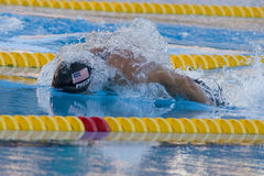 SWM :世界水上冠军-精神100m蝴蝶决赛 库存照片