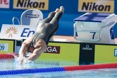 SWM: Campeonato de los Aquatics del mundo Foto de archivo libre de regalías