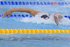 SWM: Campeonato dos Aquatics do mundo - homens final da mistura de 4 x de 100m Foto de Stock Royalty Free