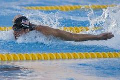 SWM: Campionato di Aquatics del mondo - finale della farfalla del 100m degli uomini Fotografie Stock
