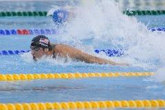 SWM: Campionato di Aquatics del mondo - finale di miscuglio dei 4 x del 100m degli uomini Immagini Stock