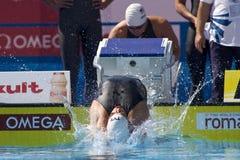 SWM : Championnat d'Aquatics du monde - Images stock