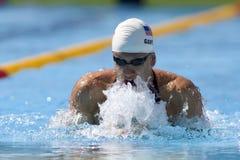 SWM : Championnat d'Aquatics du monde - Images libres de droits