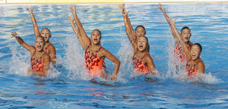 SWM : Natation sychronised de l'équipe de femmes de championnat du monde Image libre de droits