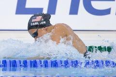 SWM: VärldsAquaticsmästerskap - kvinnors fina för 100m bröstsim Arkivfoton