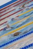 SWM: VärldsAquaticsmästerskap - kvinnors final för 800m fristil Royaltyfria Foton