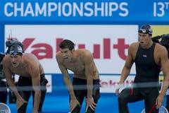 SWM: VärldsAquaticsmästerskap - mäns fina för 4- x 100m fristil Royaltyfri Foto