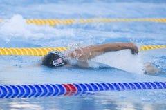 SWM: VärldsAquaticsmästerskap - mäns fina för 4- x 100m fristil Royaltyfria Bilder