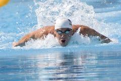 SWM: VärldsAquaticsmästerskap - qualific mäns 100m fjäril Arkivfoton