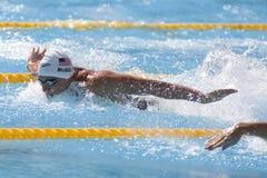 SWM: VärldsAquaticsmästerskap - qualific mäns 100m fjäril Arkivbilder