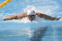 SWM: VärldsAquaticsmästerskap - qualific mäns 100m fjäril Royaltyfri Bild