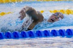 SWM: Weltaquatics-Meisterschaft - Freistilschluß das 1500m der Frauen Lizenzfreie Stockfotos