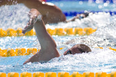 SWM: World Aquatics Championship Royalty Free Stock Photos