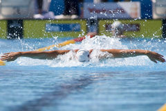 SWM: World Aquatics Championship - mens 4 x 100m medley Royalty Free Stock Photography