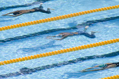SWM: World Aquatics Championship - womens 200m breastroke. Jul 30 2009; Rome Italy; Nanaka Tamura (JPN) top, Rebecca Soni (USA) centre, and Mirna Jukic (AUT) Stock Images