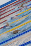 SWM: World Aquatics Championship - Womens 800m freestyle final Royalty Free Stock Photos