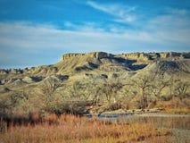 Swoboda punkt Góruje Nad Arkansas rzeką Zdjęcie Royalty Free