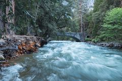 The swollen Merced River in Spring, Yosemite National Park stock photo