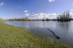 Swollen river Stock Image
