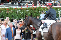 The Sword Dancer Invitational Stakes Royalty Free Stock Photography