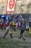Sword fight between knights in fair Royalty Free Stock Photo