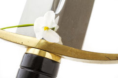 Sword and flower Stock Photography