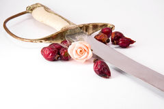 Sword and rose Stock Photos