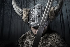 Sword, Viking warrior with helmet over forest background Royalty Free Stock Photos