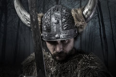 Sword, Viking warrior with helmet over forest background Stock Image