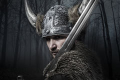 Sword, Viking warrior with helmet over forest background Stock Photography