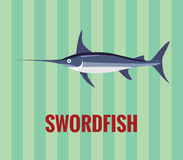 Swordfish - drawing on green background. Stock Images
