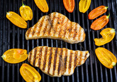 Swordfish on the grill with peppers Royalty Free Stock Photo