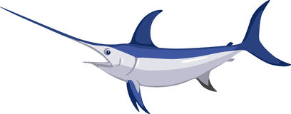 Swordfish Royalty Free Stock Photo