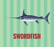 Swordfish - rysujący na zielonym tle Obrazy Stock
