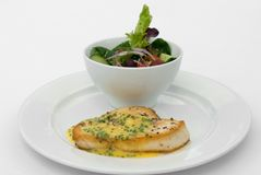 Swordfish & Salad Royalty Free Stock Photo