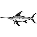 Swordfish Trophy Illustration Royalty Free Stock Photos