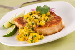 Swordfish with tropical salsa. Broiled swordfish with mango salsa and lime stock photography