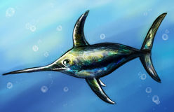 Swordfish underwater sketch Stock Images