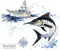 Swordfish. watercolor Marlin illustration. Atlantic fishing Stock Photo