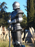 Swordsman Стоковые Фото